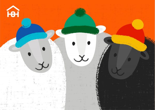 Orange Christmas card with 3 sheep wearing different coloured wooly hats | Homeless Oxfordshire shop